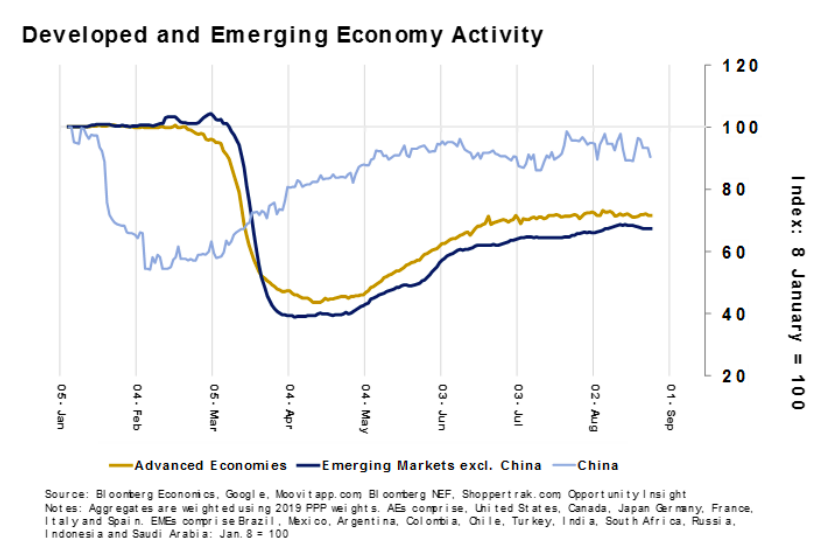 Developed and Emerging Economy Activity